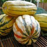 Autumn Spiced Squash Saute Recipe – 2 Points