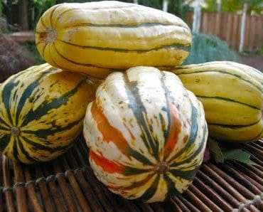 autumn spiced squash sautee