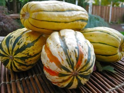 Autumn Spiced Squash Saute