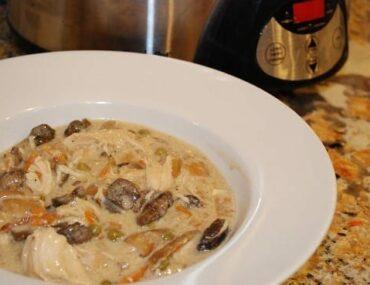 creamy mushroom chicken stew
