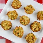 Zucchini Tots Recipe – 2 Points
