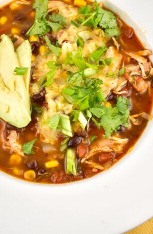 Instant Pot Chicken Enchilada Soup Recipe – 1 Point